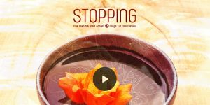 Stopping der Film